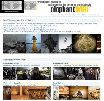 Filmloop_elephantwire