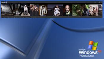 Wiseelephantdesktop