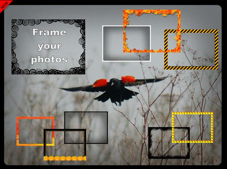Frame_photos
